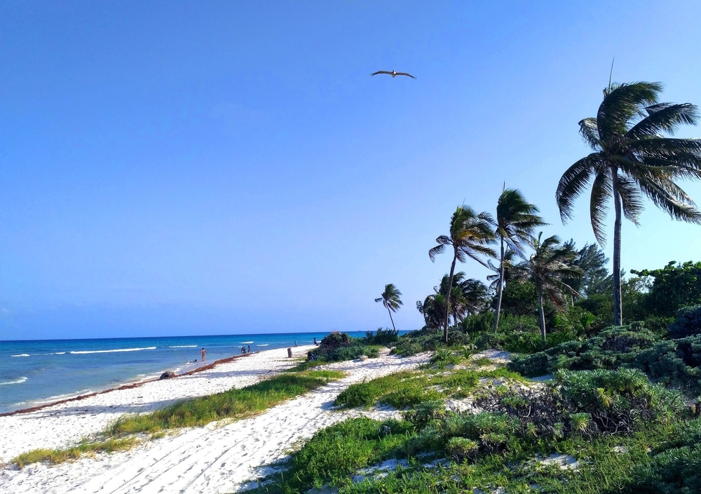 Punta Esmeralda: cenotes and sea as one